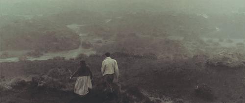 #23: O morro dos ventos uivantes de Emily Brontë